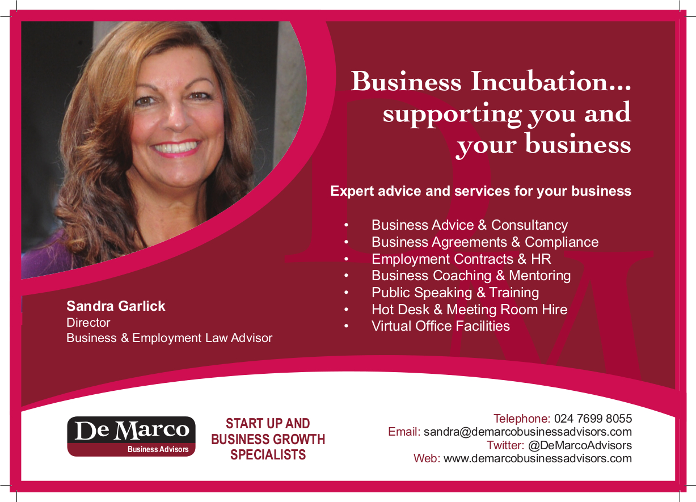 DeMarco Business Advisors Ad jpeg