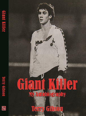 Terry Gibson Autobiography 2014 cover